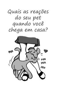 paginas divulgação7